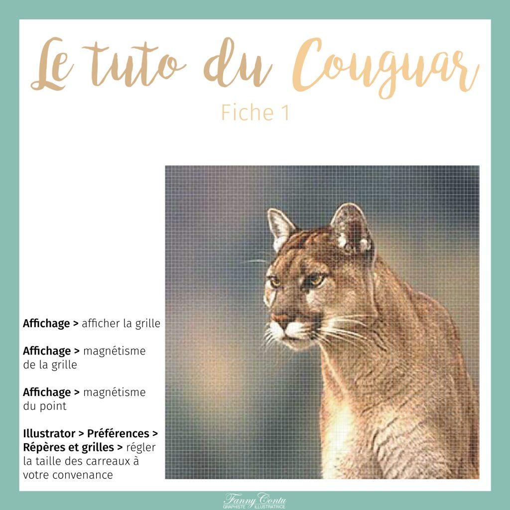 Couguar-tuto-partie1